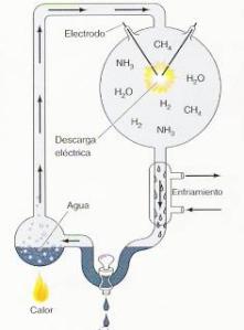 quimica vida