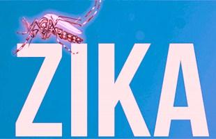 zika OMS