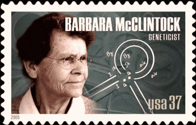 barbara_mcclintock_sello
