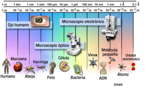 el microscopio unab