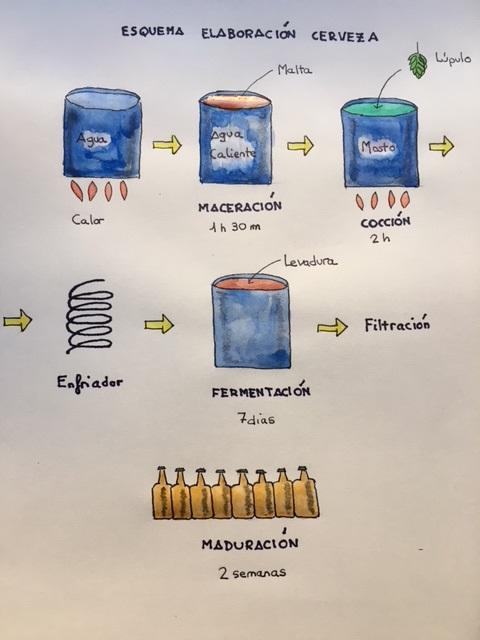 Elaboracion cerveza dibujo