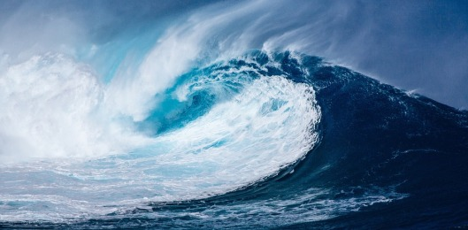 el mar 5
