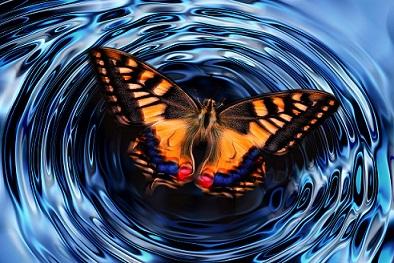 Efecto mariposa OK