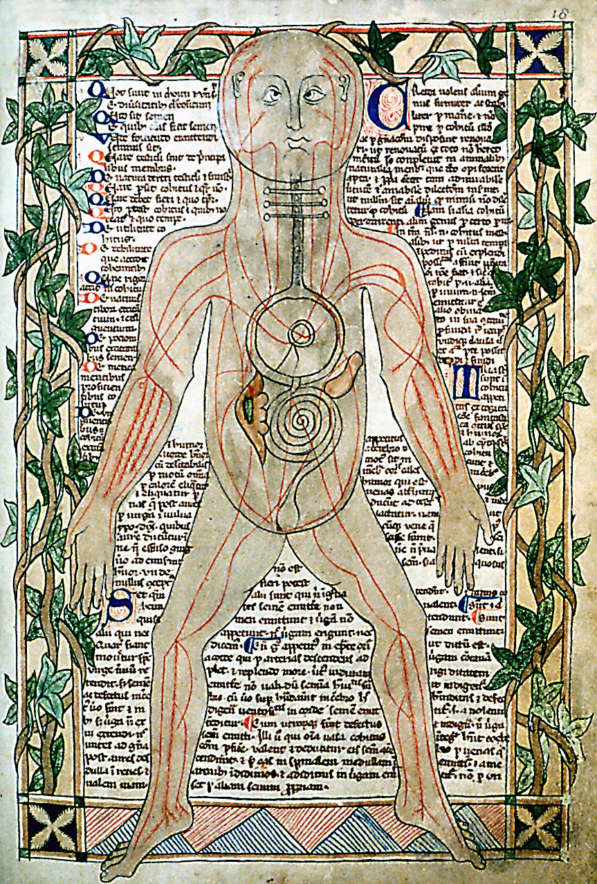 manuscrito medicina